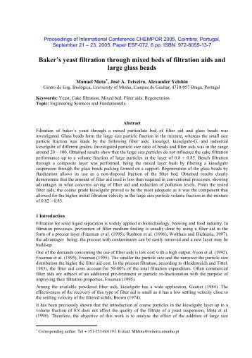 Abstract Template for the CHEMPOR 2005 Conference - Yelshin.net