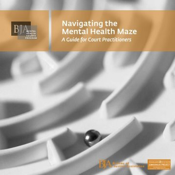 Navigating the Mental Health Maze - Ohio Ex-Offender Reentry ...