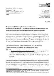Förderung Konzepte Energetische Stadtsanierung SH.pdf