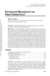 Patterns and Mechanisms of the Forest Carbon Cycle - Sierra Forest ...