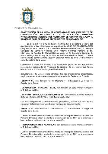 Acta ayuda a domicilio 2010 - Lora del Río