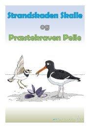 Strandskaden Skalle og Præstekraven Pelle - Mit Vadehav