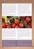 Descarga en PDF la revista Vegetus nº 19 - Unión Vegetariana ... - Page 5