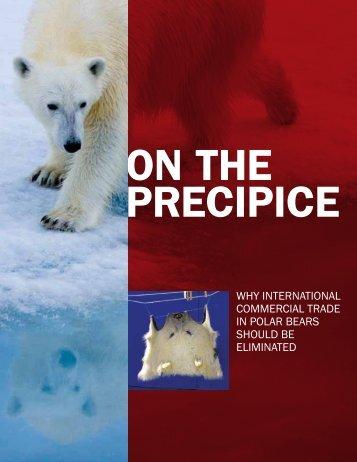 polar-bear-OV