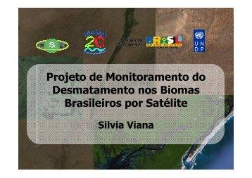 Silvia Viana - CSR/Ibama - OBT