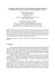 Uso de imagens CBERS2 (CCD) para identificao de ... - OBT - Inpe