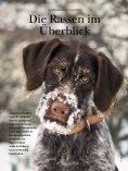Die Rassen im Ãœberblick! - Wild und Hund - Seite 4