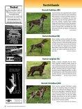 Die Rassen im Ãœberblick! - Wild und Hund - Seite 5