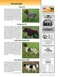 Die Rassen im Ãœberblick! - Wild und Hund - Seite 6