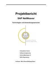 SAP NetWeaver® Technologien und Anwendungsszenarien - Bericht