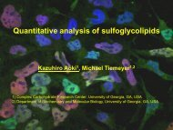 Quantitative analysis of sulfoglycolipids - University of Georgia