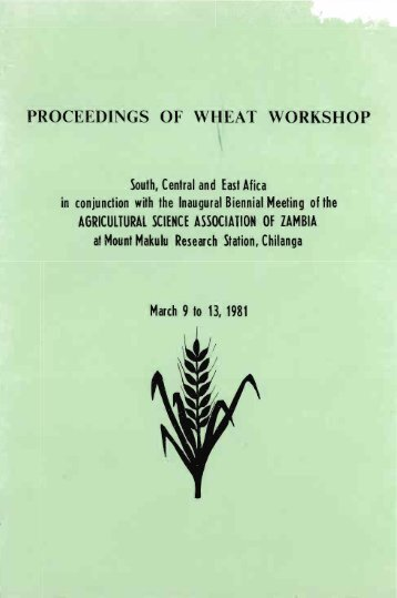 PROCEEDINGS OF WHEAT WORKSHOP - cimmyt