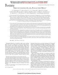 JJ S á nchez G. 2 , L. De La Cruz L. 2 , VA Vidal M. 4 , J. Ron P. 2 , S ...