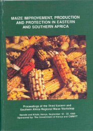 maize improvement, production and protection in eastern ... - Cimmyt