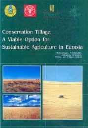 Conservation Tillage - Cimmyt