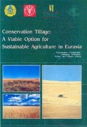 Conservation Tillage - Cimmyt