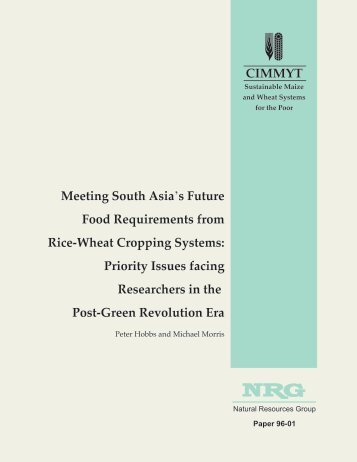 Meeting South Asia's Future Food Requirements from Rice-Wheat ...