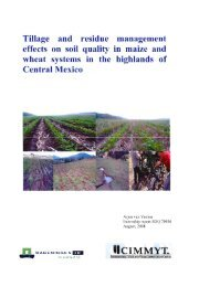 Tillage and residue management effects on soil quality in ... - Cimmyt