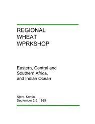 REGIONAL WHEAT WPRKSHOP - Cimmyt
