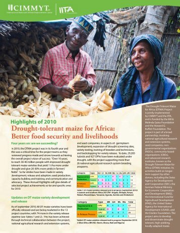 Drought-tolerant maize for Africa: Better food security and ... - cimmyt