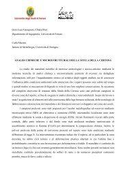 analisi chimiche e microstrutturali - Enea