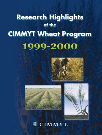 Research Highlights of the CIMMYT Wheat Program 1999-2000