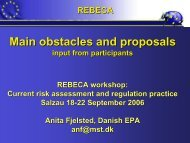 Summary of the Main Obstacles and Proposals ... - REBECA