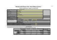 Muster Finanzierungsplan (PDF) - Modellvorhaben Bürger(in)arbeit