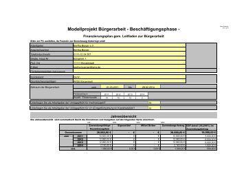 muster finanzierungsplan pdf modellvorhaben brgerinarbeit - Rentabilittsvorschau Muster