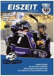 Black Eagles Reutlingen vs MERC Mannheim Eiszeit 150315