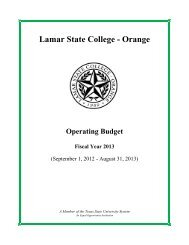 Fiscal Year 2013 - Lamar State College-Orange