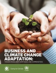 Business and Climate Change adaptation: - D'Dline 2020