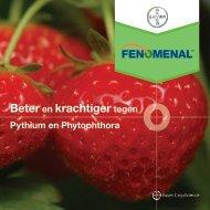Brochure Fenomenal aardbei 2069 KB - Bayer CropScience