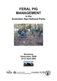 Download Feral pig management in the Australian Alps national parks