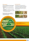 PDF download - Bayer CropScience - Page 3