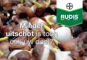 Tipkaart Rudis bolontsmetting tulp 2193 KB - Bayer CropScience