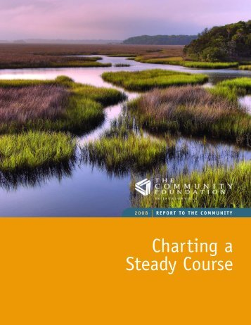 Charting a Steady Course - The Community Foundation in ...