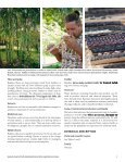 Bamboo_specialty_crop-WP-61-final-version - Page 3