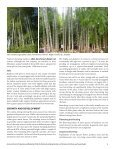 Bamboo_specialty_crop-WP-61-final-version - Page 6