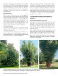 Bamboo_specialty_crop-WP-61-final-version - Page 7