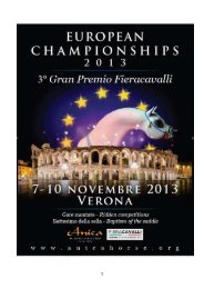 EUROPEAN CHAMPIONSHIPS rules and regulations 2013 - ANICA