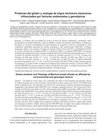 Proteínas del gluten y reología de trigos harineros ... - cimmyt