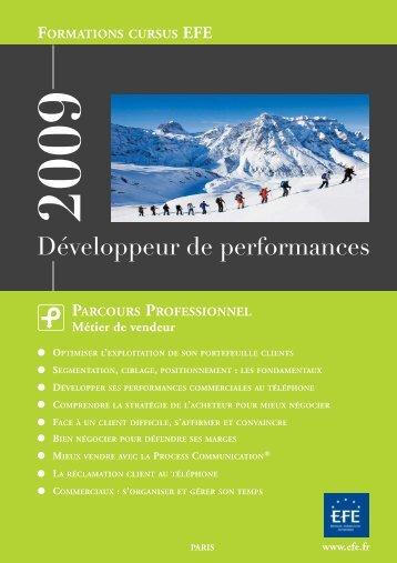 Développeur de performances - Efe