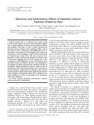 Genotoxic and Inflammatory Effects of Depleted Uranium Particles ...