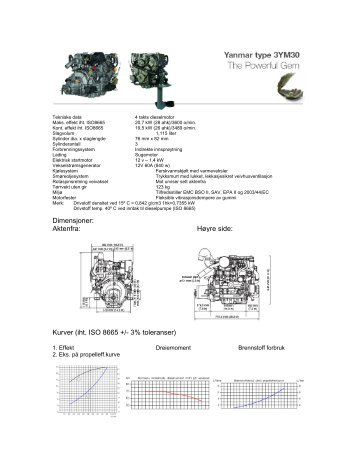 Yanmar ym30.pdf