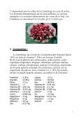 la canneberge - Hippocratus - Page 7