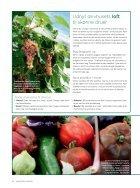 Light udgave 2015: Dyrk drivhuset - Page 5