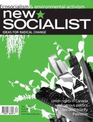 132_NewSocialist-Issue62