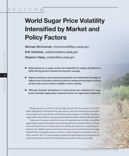 World Sugar Price Volatility Intensified by Market and