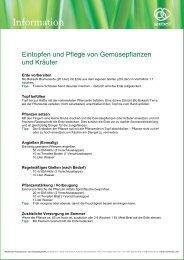 Eintopfen_und_Pflege_von_Gemuesepflanzen.pdf [233 ... - Multikraft